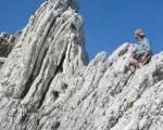 paleocene-micrites_wairarapa