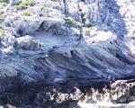 late-quaternary-eolianites-rottnest-island-wa