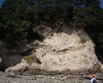 slump-folding-nz-waitemata-basin